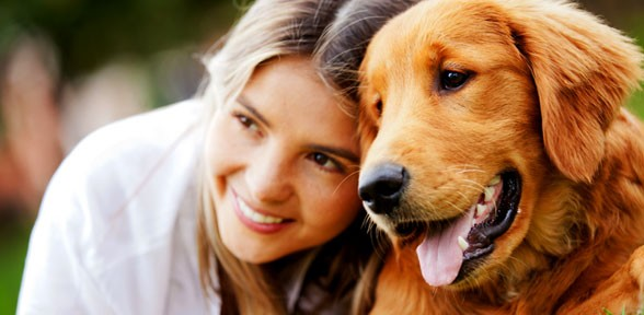 Tips For Adopting A Pet From An Animal Shelter