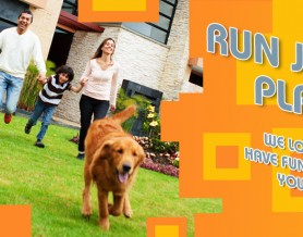 Run Jump Play with family running with dog Slider