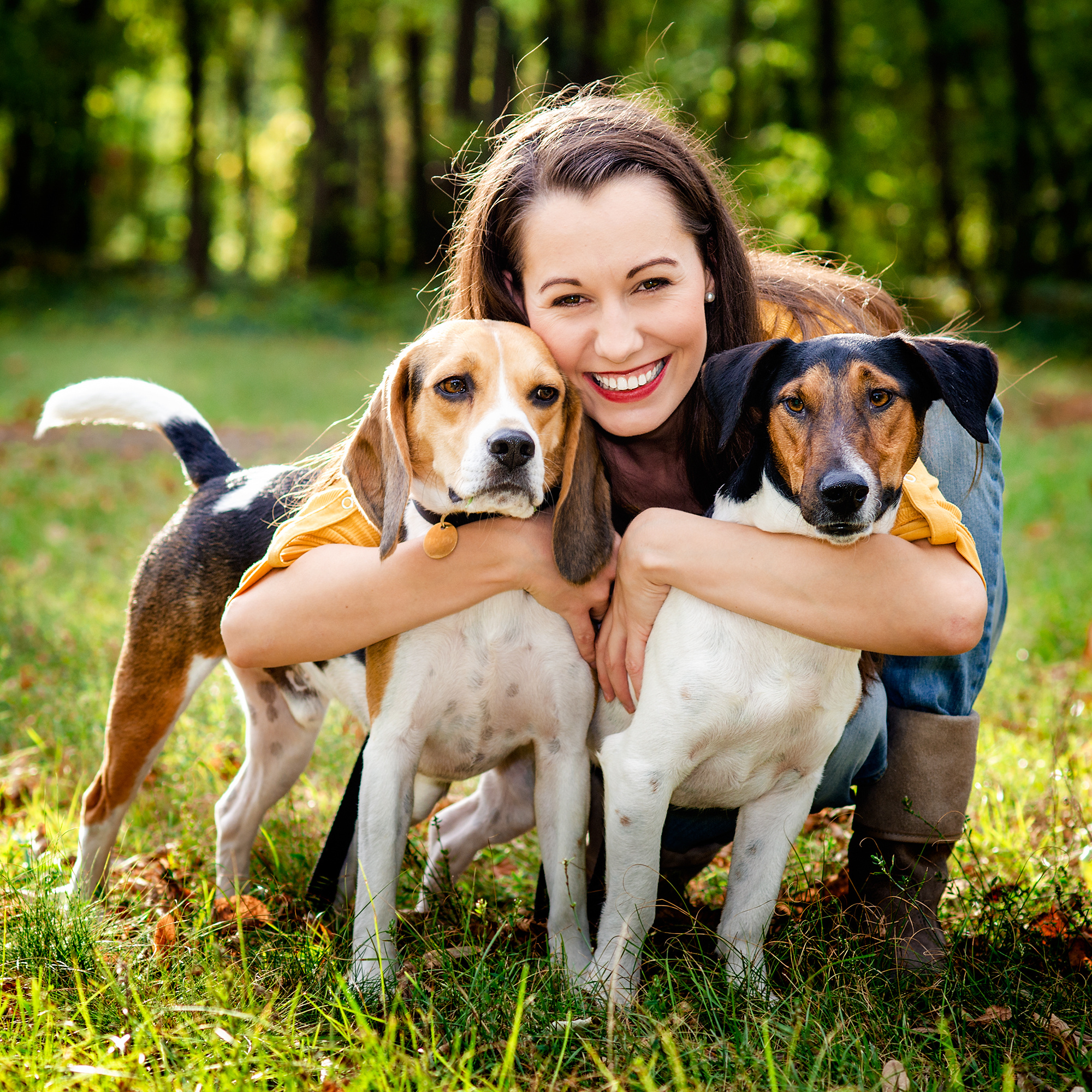 How to prevent lyme disease in your pets for Be a dog sitter