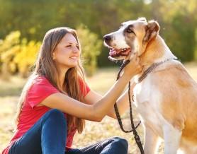 woman walking dog on leash sitting down