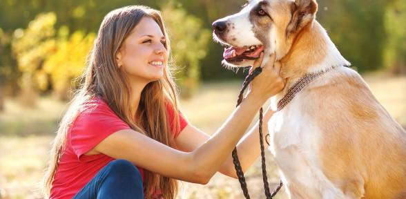 Tips For Celebrating National Walk Your Dog Day