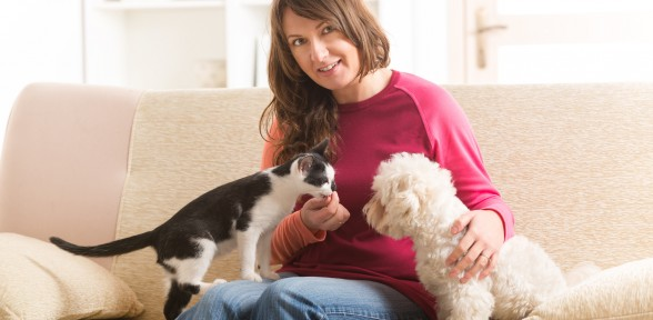 5 Tips For Keeping your Pet Safe Over The New Year Celebrations