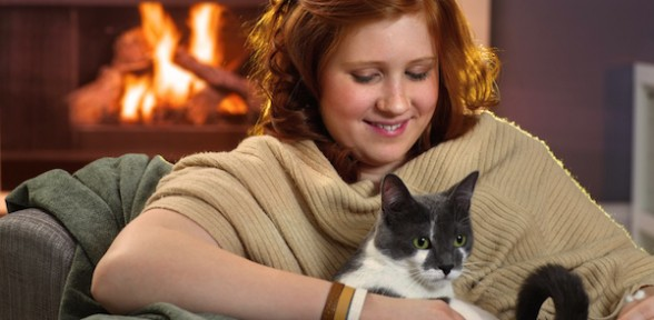Celebrate National Cat Health Month